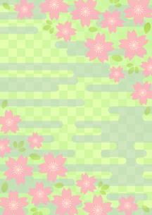 桜の和柄の写真素材 [FYI00282716]