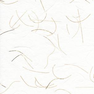 和紙のテクスチャの写真素材 [FYI00282818]