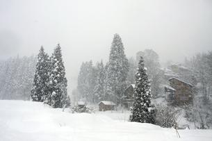 スキー場の写真素材 [FYI00283200]
