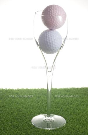 フルートグラスとゴルフボールの写真素材 [FYI00283271]