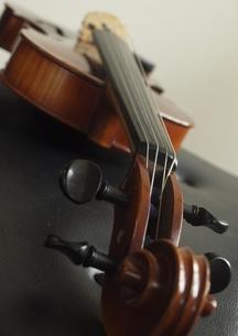 ヴァイオリンの写真素材 [FYI00283616]