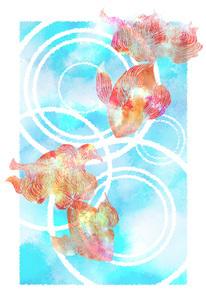 金魚の素材 [FYI00283765]