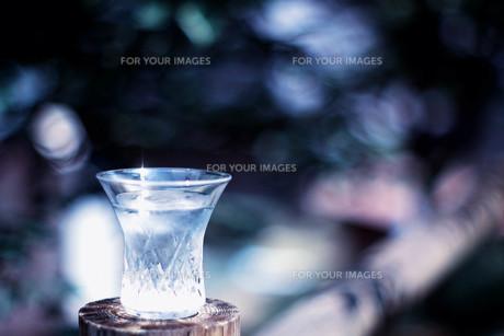 グラスの写真素材 [FYI00283957]