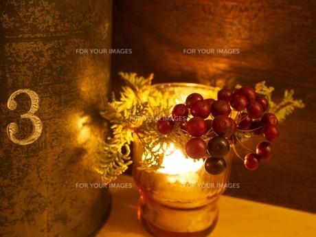 木の実の照明の素材 [FYI00284082]
