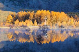小田代湖の写真素材 [FYI00284293]