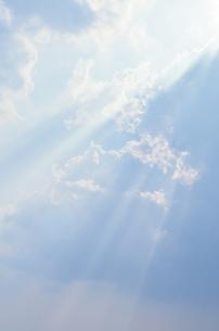 柔らかい光芒の写真素材 [FYI00284306]