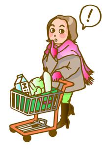 買物する女性の写真素材 [FYI00284739]