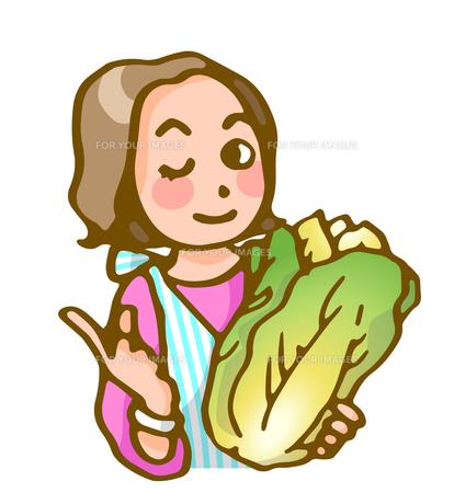主婦と白菜の写真素材 [FYI00284837]