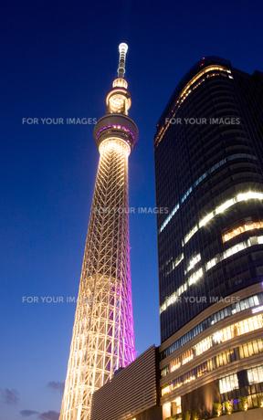 東京スカイツリーの雅のライトアップの写真素材 [FYI00284947]