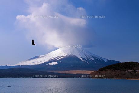 山中湖と富士山の写真素材 [FYI00284950]