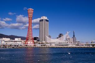 神戸港風景の写真素材 [FYI00284959]