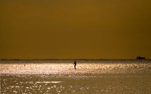 スタンドアップパドルの夕日の写真の写真素材 [FYI00284962]
