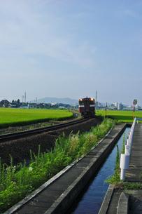 田園をゆく‐02の写真素材 [FYI00285119]