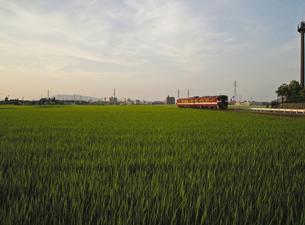 田園をゆく‐01の写真素材 [FYI00285122]