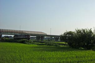 田園をゆく‐03の写真素材 [FYI00285125]
