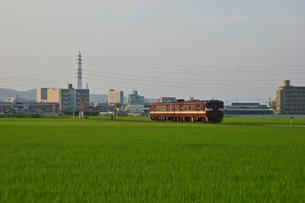 田園をゆく‐04の写真素材 [FYI00285126]