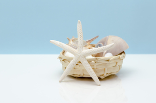 貝殻と籠の写真素材 [FYI00285335]