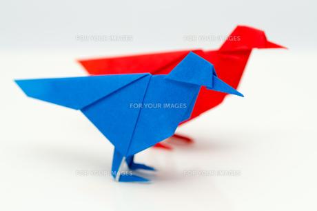 折り紙の小鳥の素材 [FYI00285431]