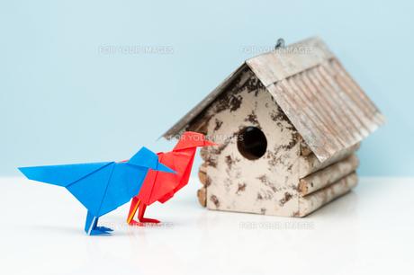 折り紙の小鳥と巣箱の素材 [FYI00285443]