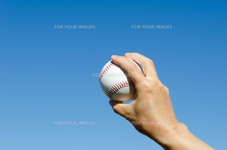 野球のボールの写真素材 [FYI00285536]