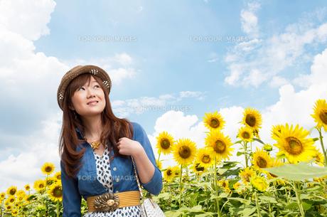 若い女性とひまわり畑の写真素材 [FYI00285608]