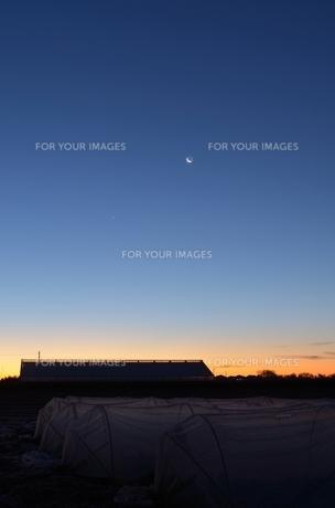 夜明け前の台地の写真素材 [FYI00285923]