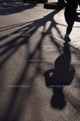冬の走者の写真素材 [FYI00285929]