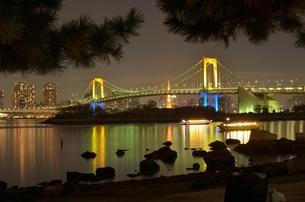 二人で見る夜景の写真素材 [FYI00285951]
