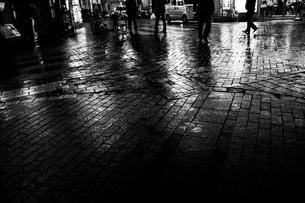 雨上がりの夜、光と影の写真素材 [FYI00287613]