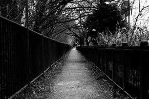 道の写真素材 [FYI00287630]