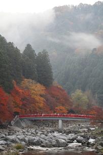 香嵐渓の写真素材 [FYI00287924]