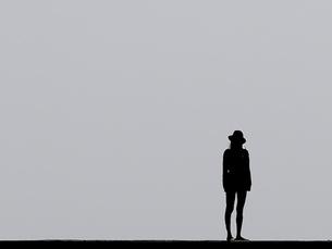 女性の写真素材 [FYI00288353]