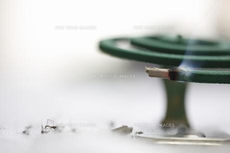 蚊取り線香の写真素材 [FYI00288477]