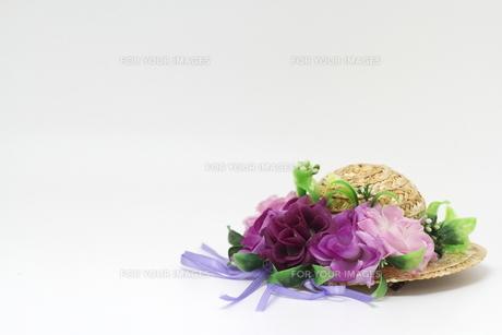 麦わら帽子の写真素材 [FYI00288996]