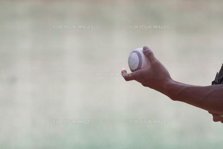 硬式野球ボールの写真素材 [FYI00289175]