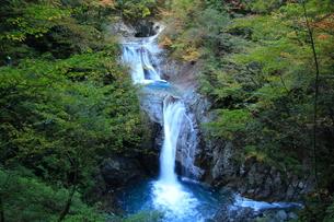 滝 西沢渓谷の写真素材 [FYI00289524]
