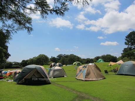 夏フェスのキャンプ場の写真素材 [FYI00289582]