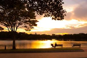 夕方の大濠公園の写真素材 [FYI00289674]