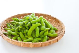 枝豆の写真素材 [FYI00289684]