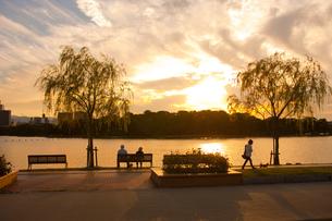 大濠公園の夕日の写真素材 [FYI00289690]