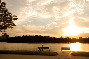 夕方の大濠公園の写真素材 [FYI00289691]