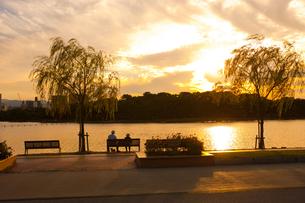 大濠公園の夕日の写真素材 [FYI00289707]