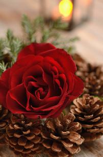 薔薇のアレンジメントとランタンの明かりの写真素材 [FYI00289759]