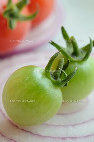 ミニトマトと紫タマネギの写真素材 [FYI00289807]