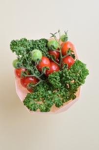 ミニトマトとパセリのブーケの写真素材 [FYI00289822]