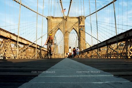 ブルックリンブリッジの写真素材 [FYI00290075]