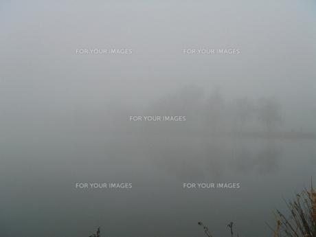 霧の素材 [FYI00290079]