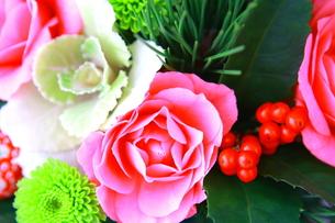 正月飾りの植物のアップの写真素材 [FYI00290143]