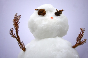 バンザイ雪だるまの写真素材 [FYI00290161]