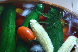 氷水で冷やした夏野菜の写真素材 [FYI00290187]